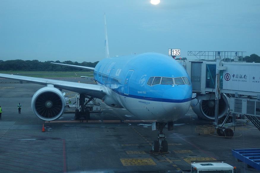 Двойные мили Flying Blue на рейсах в Южную Америку