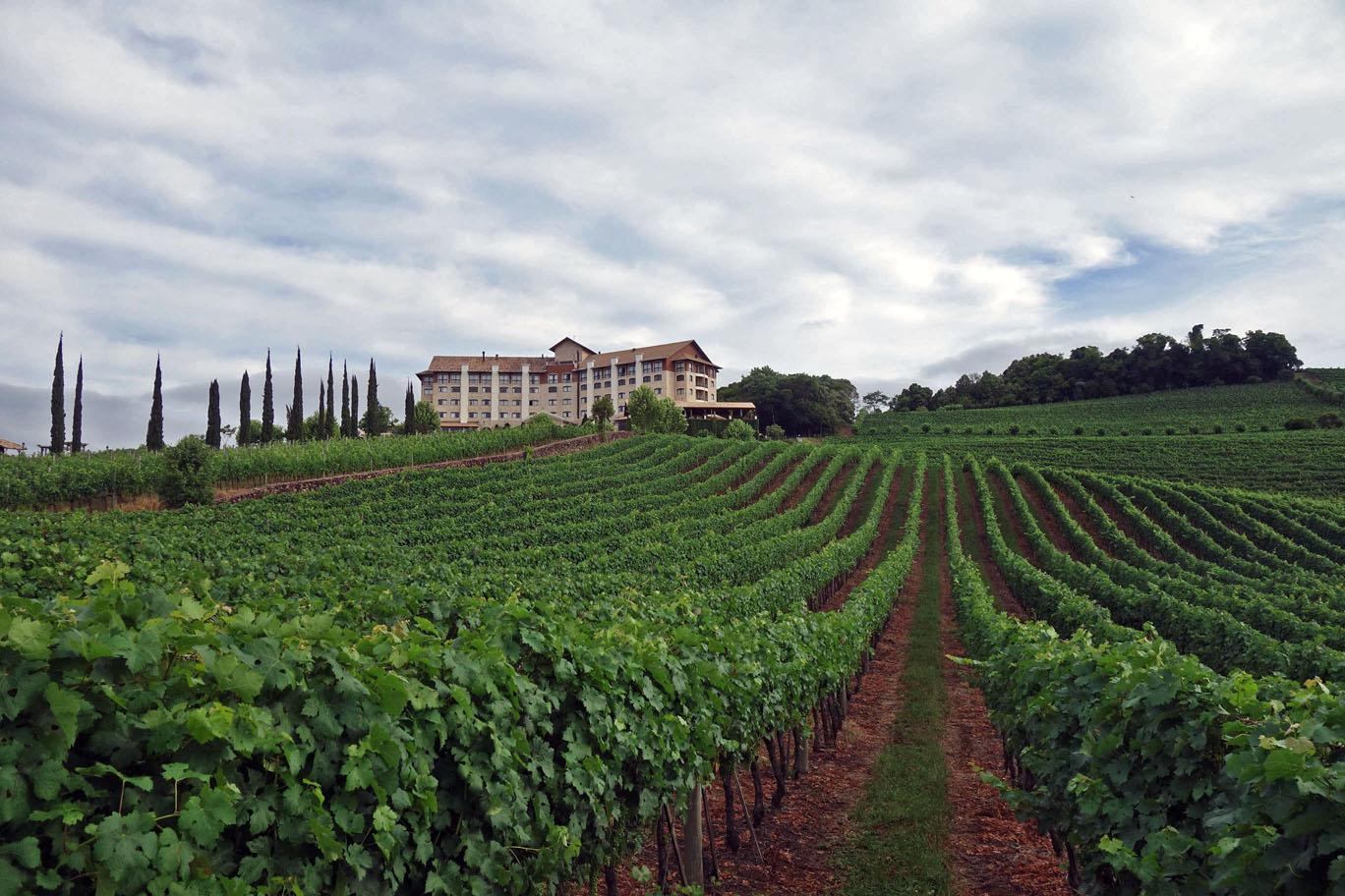 Обзор: Hotel & Spa do Vinho